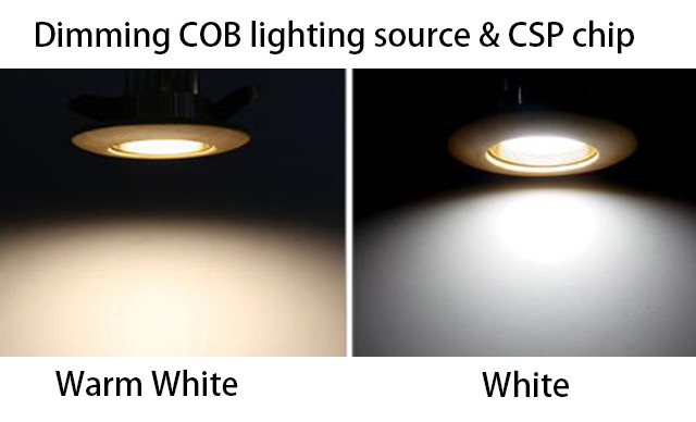 CCT Dimmable Hotel Spotlight CXB1830 18W Chips On Board Led 2